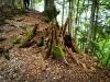Park Narodowy Sjuteska - Bośnia i Hercegowina, fot. M. Zapora