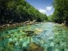 Czarnogóra - Rzeka Tara, fot. M. Zapora