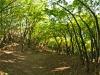 Serbia - kanion rzeki Vratna, fot. K. Meger